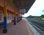 madu train