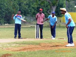cricket03