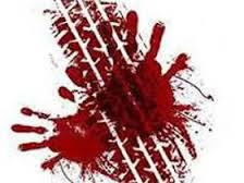 cut killed (2)