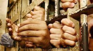 tamil captive